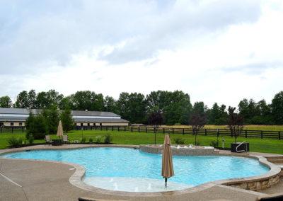 Klimat Master Pools - Freeform Pool - Natural Pool 3